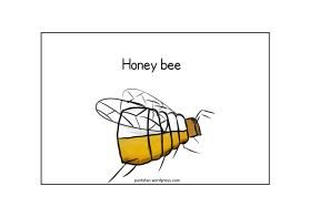 Honney bee